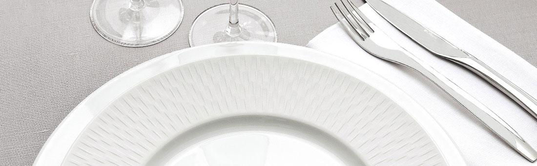 Guy Degrenne Boreal Satin dinnerware